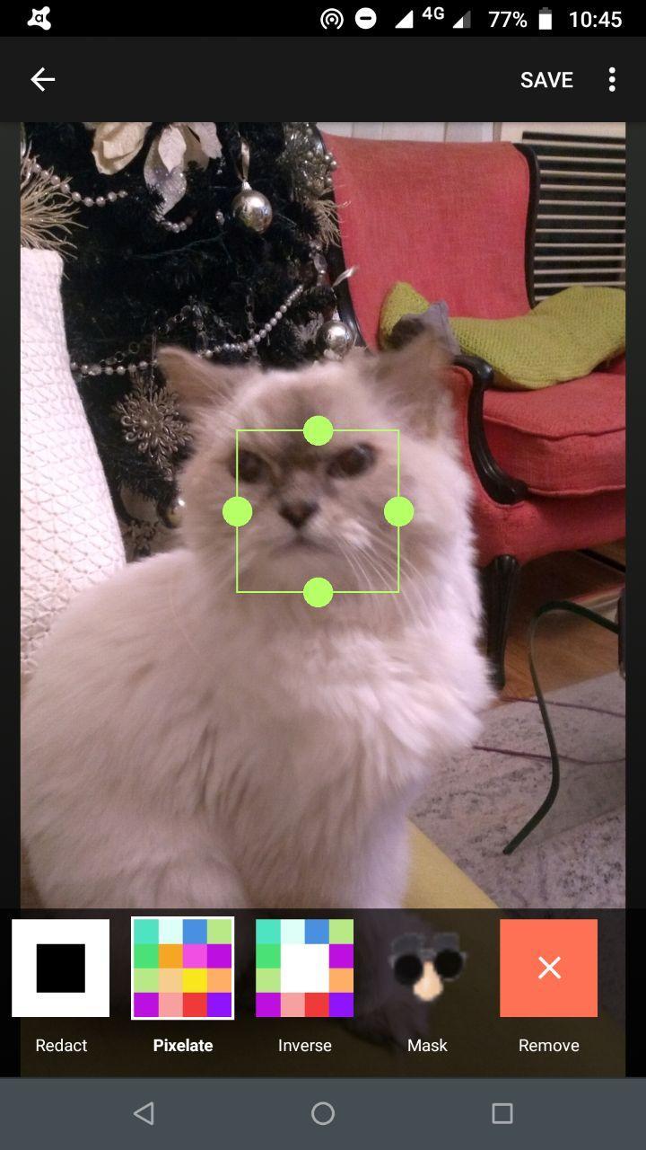 image-manipulate-1.jpg